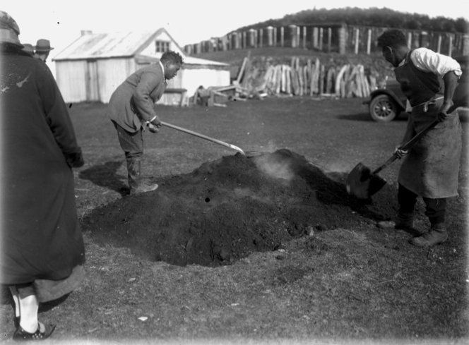 Putting earth over a hangi pit at Parihaka c1920
