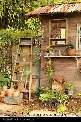 rustic tiny shed with rusty corrugated roof