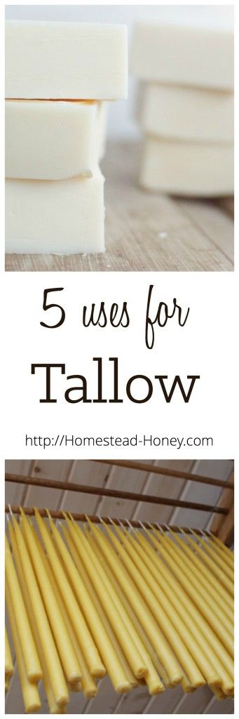 If you have access to beef fat, consider rendering it into tallow. Tallow is a true homesteader's fat, and can be used in a variety of ways. Here are five ideas. | Homestead Honey