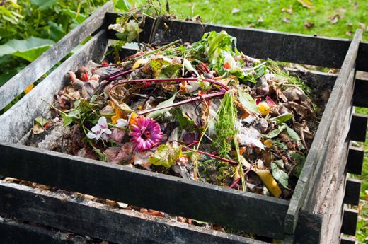Now is the perfect time to start a compost pile. You can do it fancy or simple. If you know me, you know I always prefer simple. Compost is the most important thing you can do in your garden to improve your lands (lawn, garden and landscape) fertility, get rid of kitchen and yard waste efficiently and save time and money.