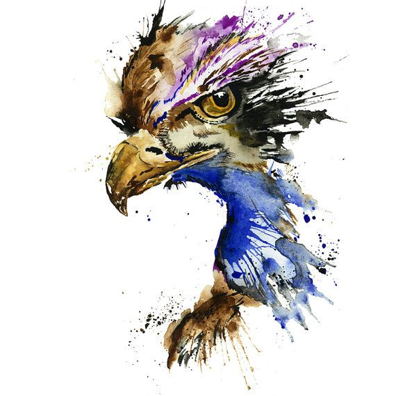 Hey, I found this really awesome Etsy listing at https://www.etsy.com/listing/247447804/eagle-art-eagle-print-eagle-watercolour