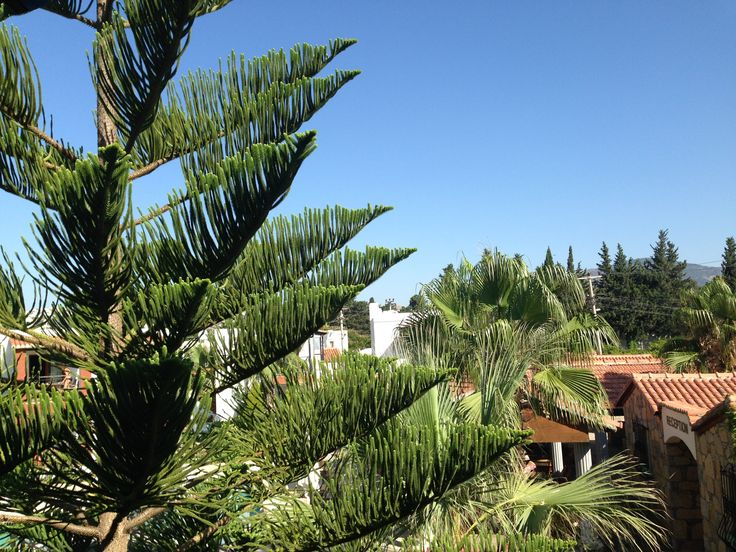 Von deinem Zimmer aus geniesst du einen herrlichen Blick auf die Bungalow-Anlage des Sirça Apart Hotel.
