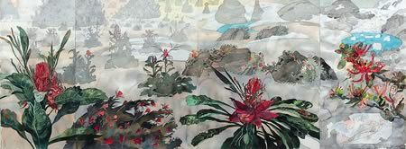 John Wolseley- The Proteacea of New South Wales and Argentina, 1996