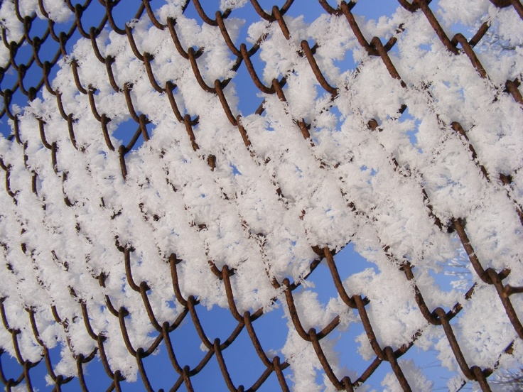 Snow on a Wire Fence - Public Domain Photos, Free Images for Commercial Use