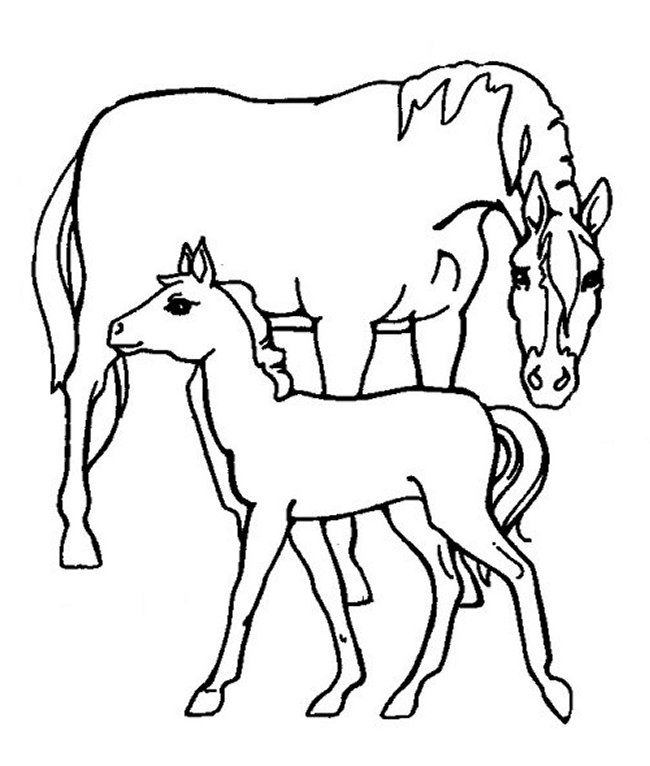 coloring pages for boys free coloring pages coloring books page online farm life sunday school preschool horses drawing