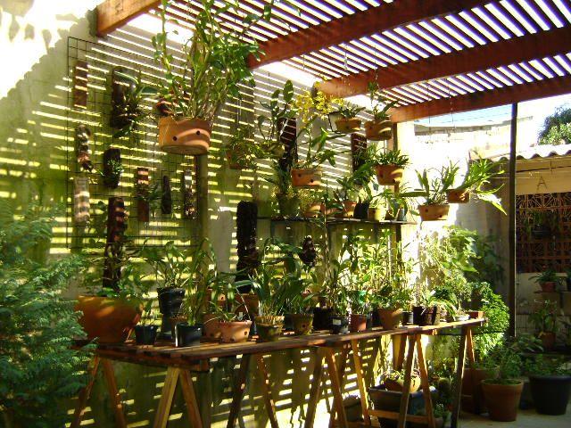 CLUBE DO ORQUIDÓFILO: Coletânea de orquidários
