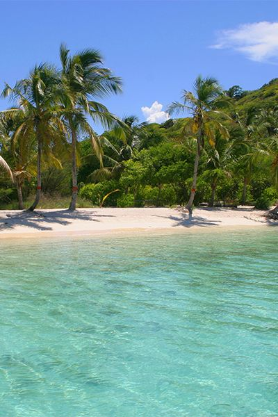 #PinUpLive St. Vincent & The Grenadines - Tobago Cays >> Look at that water!