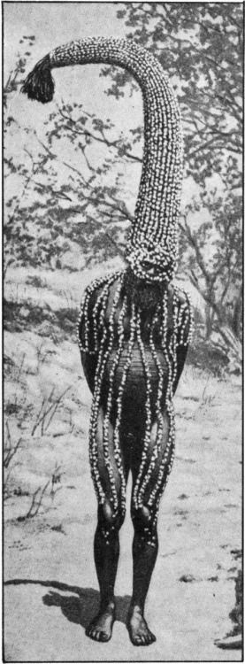 Emu man, with head-dress representing the sacred totem of his group, working magic to make emus abundant for the hunters of his tribe, Australia c.1935.