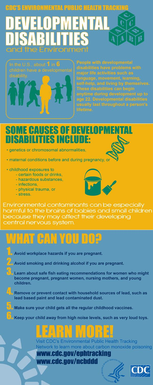 An Infographic on Developmental Disabilities.