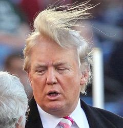 ...  for longevity, coupled with the wig that could well be moonlighting as road kill, Donald Trump scores number one position upon our list. Description from skalp.com. I searched for this on bing.com/images