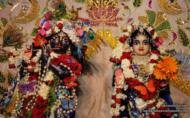 To view Radha Parthasarathi Close Up Wallpaper of ISKCON Dellhi in difference sizes visit - http://harekrishnawallpapers.com/sri-sri-radha-parthasarathi-close-up-iskcon-delhi-wallpaper-002/