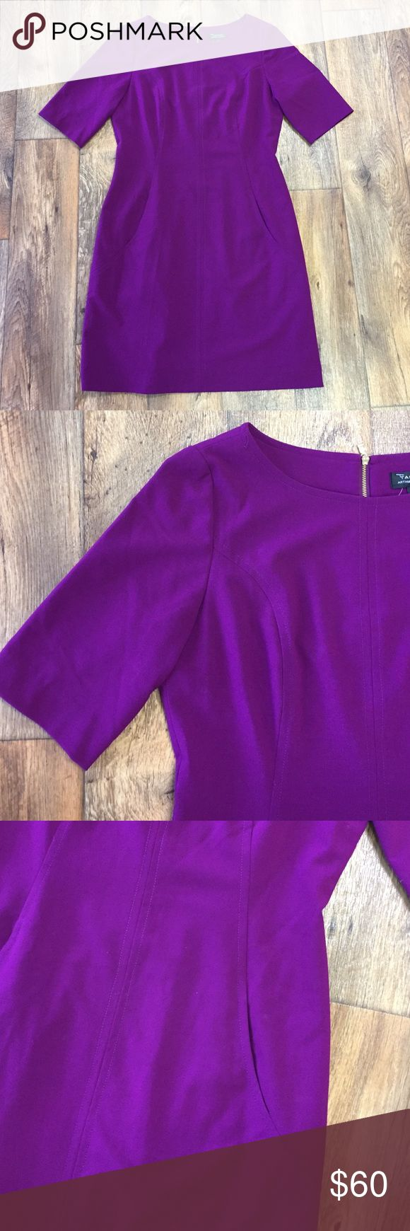Tahari Purple Structured Dress Excellent condition! Beautiful deep purple. Has pockets! Tahari Dresses Mini