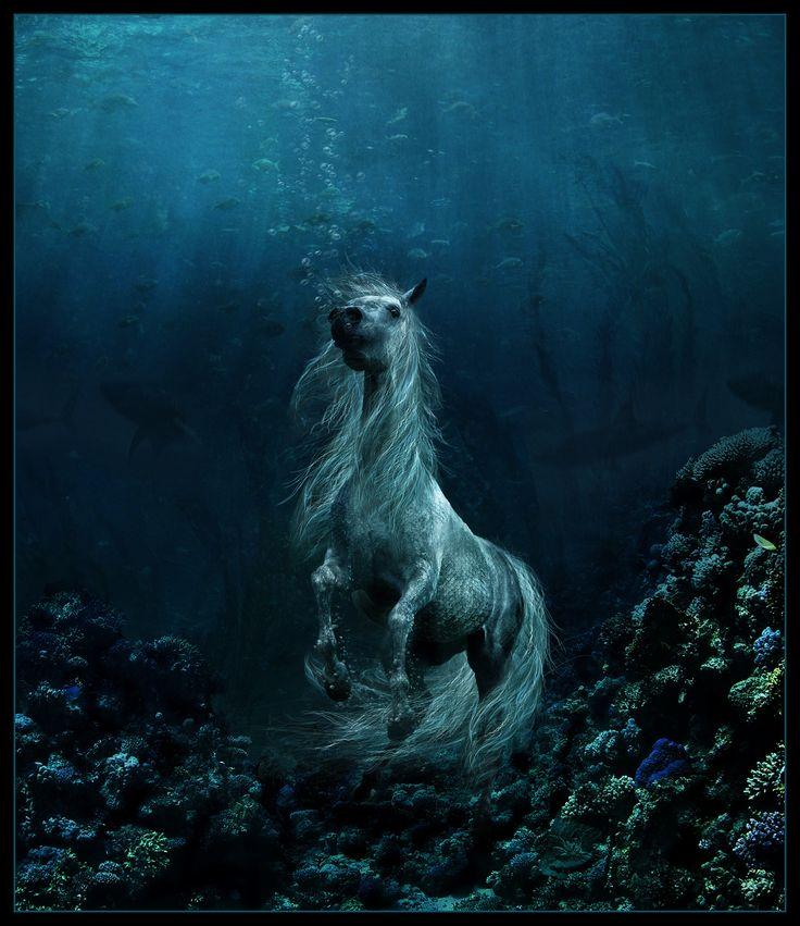 """ Kelpie water horse"