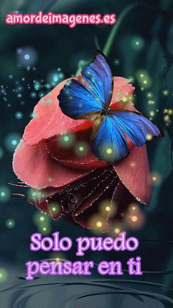 Imagenes De Rosas Con Movimiento Y Frases Luis Pinterest