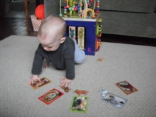 Djurmodeller och vykort föreställande var och ett av djuren. Detta är den tredje svårighetsgraden mot abstraktion. Först har barnet hanterat och benämnt enbart djurmodellerna och sedan parat samman djurmodeller och en exakt avbildning. Sedan kommer detta steg med djurmodeller och foton av djuren att para samman.