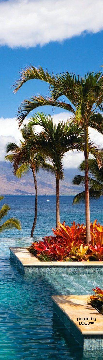 Four Seasons Maui at Wailea   LOLO❤︎