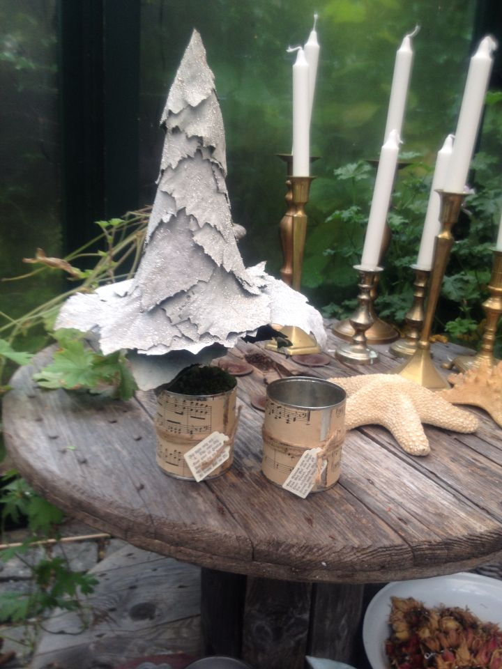 Træ i sølvpoppel