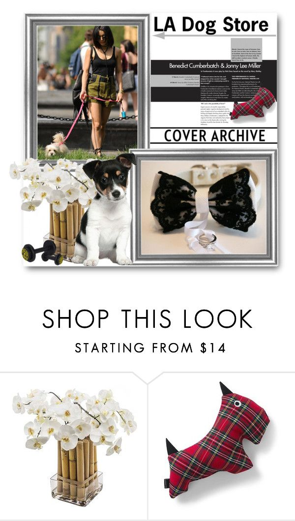 """LA Dog Store"" by ladogstores ❤ liked on Polyvore featuring Sia, Lands' End, rustic and country"
