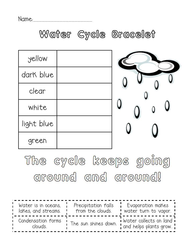 Water Cycle Bracelet.pdf teacher stuff water cycle