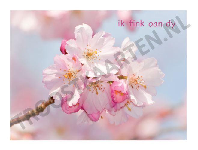 Tink oan dy (2521) troostkaart met Friese tekst