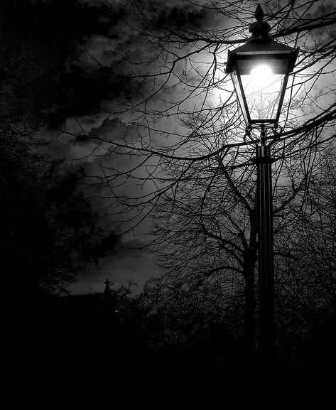 Black As Night: 30 Best Old Lamp Post Images On Pinterest