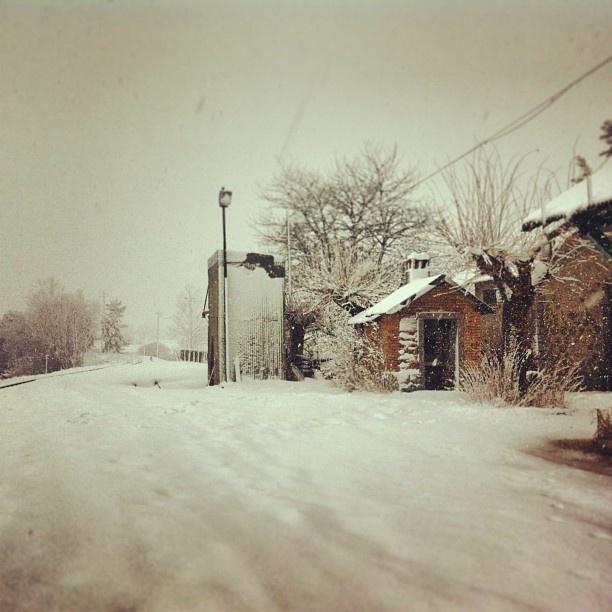 Greet snow #sila #calabria #italy