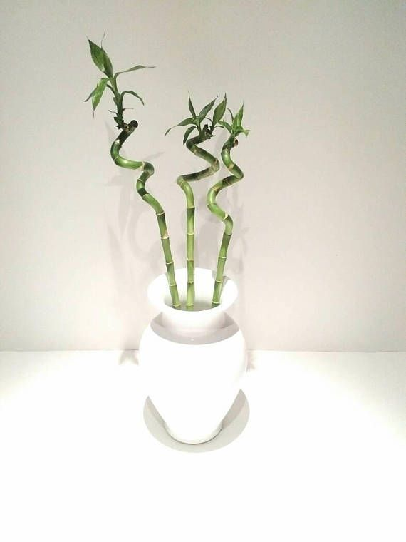 Tall white vase glazed