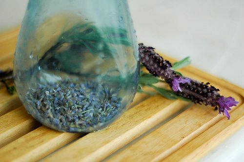 MAKING YOUR OWN INSECT REPELLENT... from plants and natural products is one way of knowing what's in your repellent. Considered to be one of the best herbal insect repellents, the strong scent of lavender is disliked by numerous bugs, including mosquitoes and flies, and it is for this reason that several preparations based on lavender are provided here.