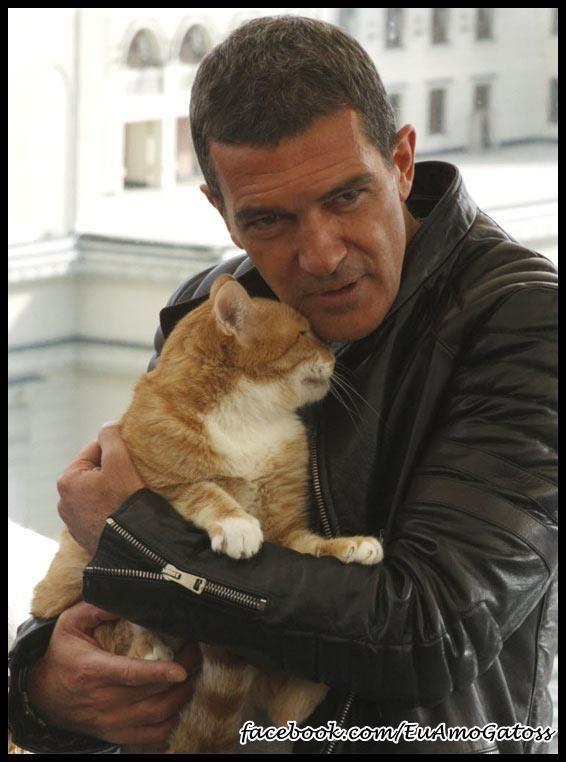 Antonio Banderas ...real men love cats