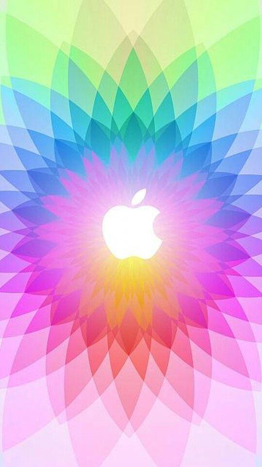 1312 best paper  color  patterns images on pinterest
