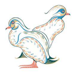 Wood ducks -Eddy Cobiness Native American art