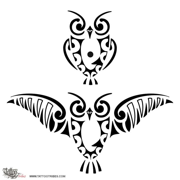 Tribal owl tatoo. I like the one with the wings down by the side