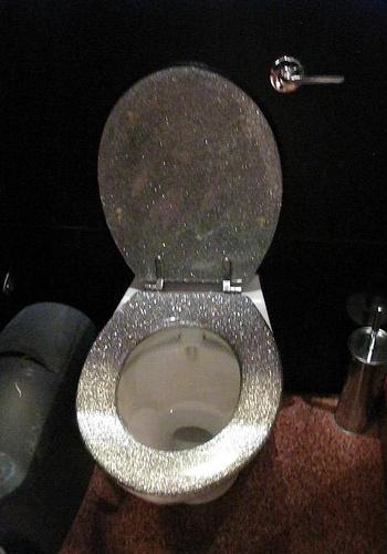 38 Best Images About Unique Toilet Seats On Pinterest