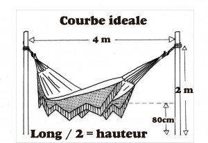hamac courbe ideale