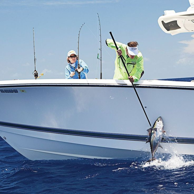 Best Motor Boatn Images On Pinterest Bay Boats Center - Blue fin boat decalsblue fin sportsman need some advice pageiboats