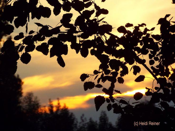 Sonnenuntergang im Spätherbst fotografiert vom Auto am Ostbahnhof Offenbach