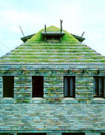Terunobu Fujimori's weed house