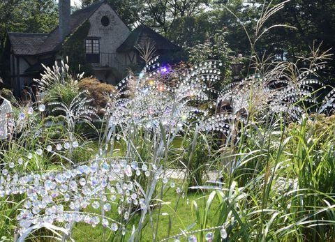 秋の箱根の名所といえば、仙石原のススキ草原。でも、それに負けないほどのススキの名所があることをご存じですか?それが、箱根ガラスの森美術館。例年秋になると美術館の庭園にクリスタルガラスのススキが展示され、13000粒のきらめきが秋空に輝きます。風を受けて七色の光を放つ姿は、夢のような美しさ。秋の一日、そんなススキ鑑賞へ出かけてみませんか。カフェでは、この時期ならではの秋スイーツもありますよ!