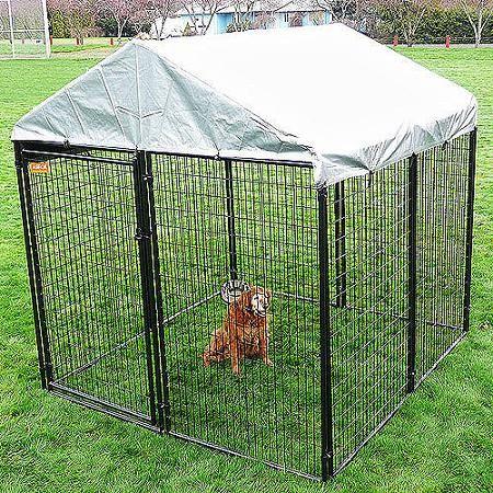 lucky dog heavy duty dog kennel 6u0027 h x 10u0027 w x 10