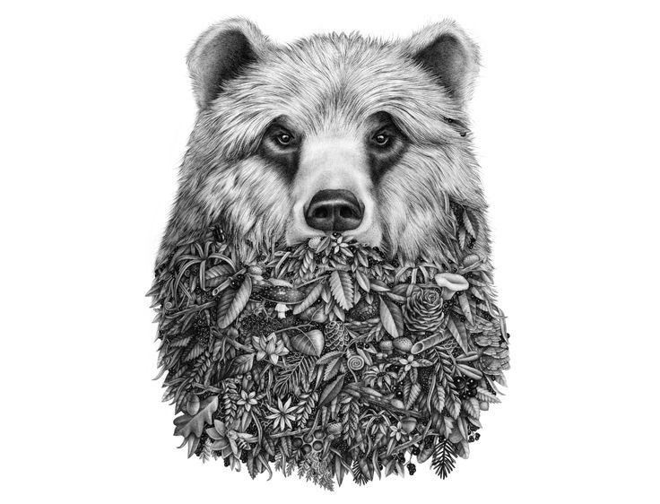 L'ours by Violaine & Jérémy