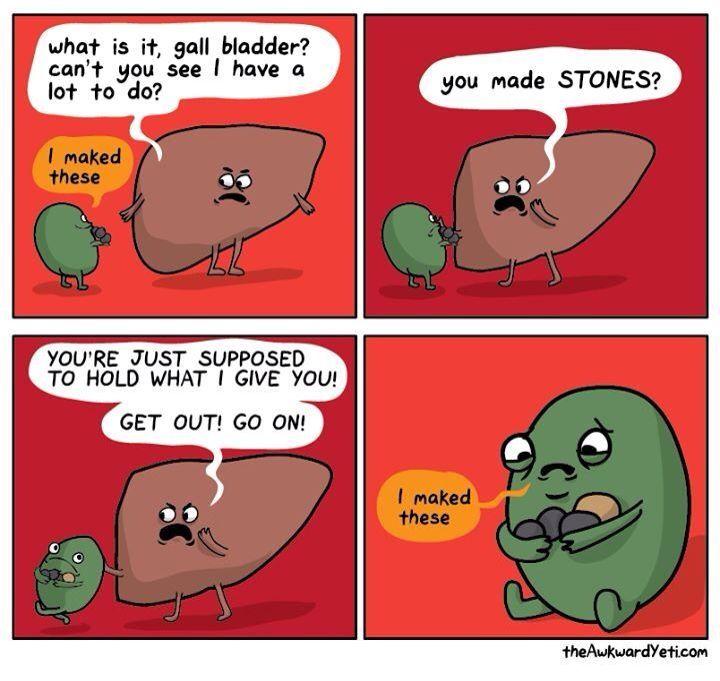 Gaul bladder maked stones!