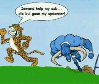 Run cheetah run