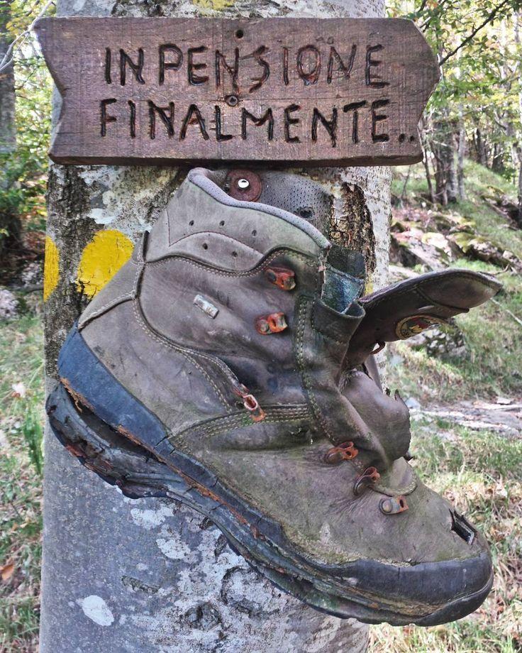 Salendo sul #sentiero verso il #monteantola si trova questo. ...