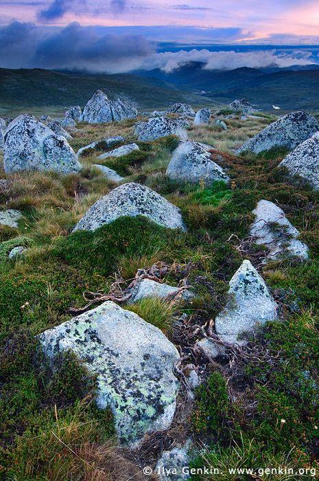 mountains in australia   ... Mountains, Kosciusko National Park, Snowy Mountains, NSW, Australia