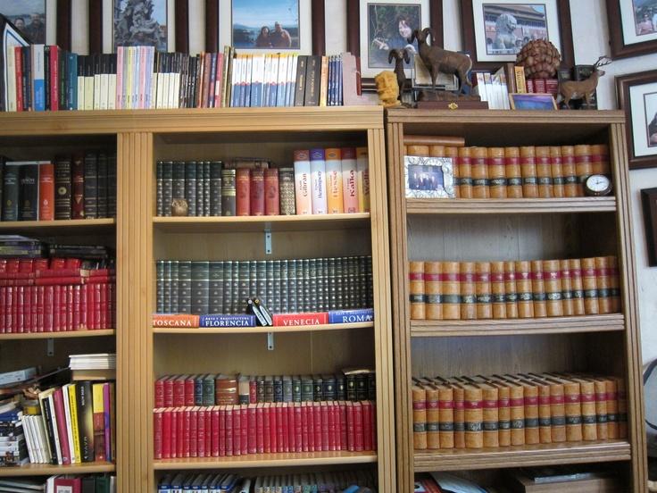 Vista Parcial de mi Biblioteca