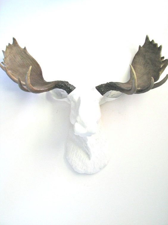 10 images about mahzerandvee on pinterest wall mount rustic modern and faux taxidermy - Fake moose head mount ...