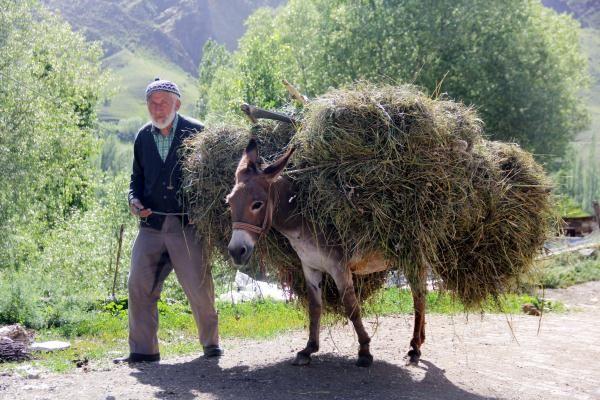 Anadolu da bir köylü
