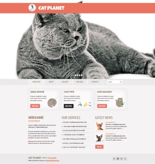 Бесплатный Cherry Wordpress-шаблон для сайта о кошках