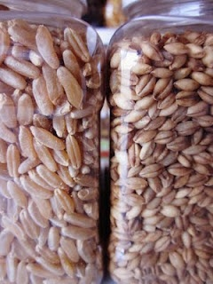 Kamut- ancient grains... I love them! This site has a lot on how to use ancient grains. Yummy ways!