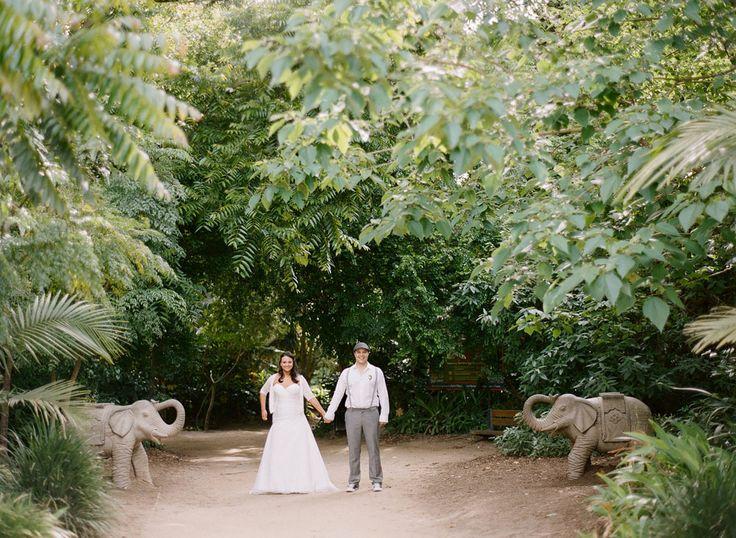 9 best zoo weddings images on pinterest melbourne zoo